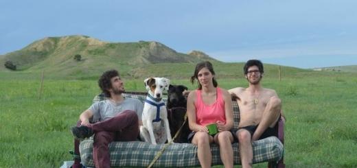 Необычное путешествие: три друга, две собаки и один диван