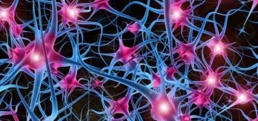 Создана самая большая нейронная сеть, предназначенная для реализации технологий искусственного интеллекта