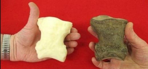 Российские ученые разработали искусственные кости