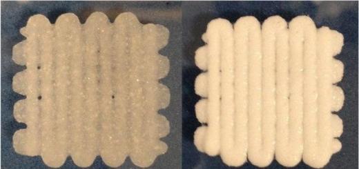Британские ученые создали «клей» для сломанных костей