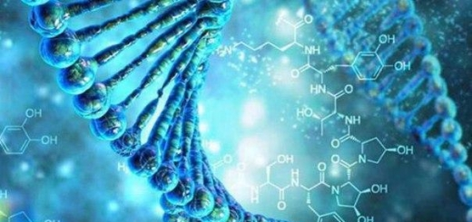 Ученые создали биоустройство для записи данных