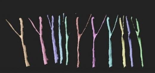 3D-печать поможет нейрохирургам в восстановлении повреждённых нервов
