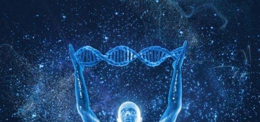В Google прогнозируют, что скоро человек сможет дожить до 500 лет