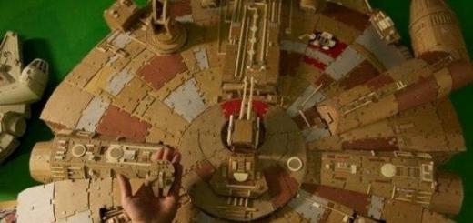 У художника-аниматора Томаса Ричнера (Колумбас, штат Огайо) в подвале собралось огромное количество картонных коробок из под различной техники. Когда пришло время произвести уборку, у него было два варианта: выкинуть их или построить 1,5 метровую модель космического корабля «Тысячелетний сокол» (анг