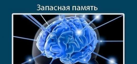 7 «вмятин», которые оставляет интернет в нашем мозге. Оказывается, сколько проблем нам несет такое благо цивилизации, как интернет