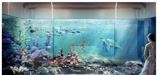 В 2016 году появятся первые подводные виллы