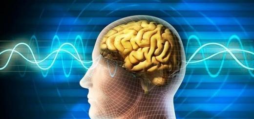 Восприятие пространства зависит от колебаний в мозге