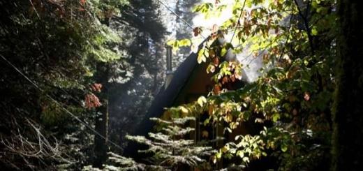 Крошечная хижина в лесу