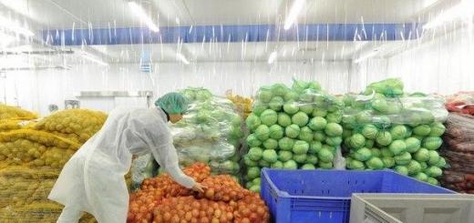 Уже в следующем, 2017 году россияне будут есть облученные продукты. Это будет специальное облучение с помощью электронов. Как стало известно, именно таким способом технологи пытаются сохранить продукты питания дольше.