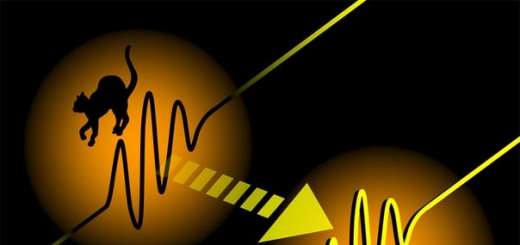 Микроб Шрёдингера: учёные-физики планируют телепортировать живой организм